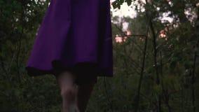 La mujer hermosa joven camina descalzo en el bosque en una falda p?rpura en el tiempo crepuscular metrajes