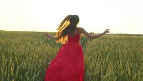 La mujer hermosa joven feliz en vestido rojo arma el funcionamiento aumentado en campo de trigo en el verano de la puesta del sol almacen de video