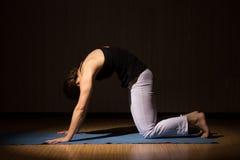 La mujer hermosa joven hace la aptitud que presenta, asanas de la yoga Fotos de archivo