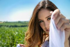 La mujer hermosa, la novia con los ojos azules y el pelo marrón camina a través de campo de la cosecha en un día soleado del ` s  fotos de archivo libres de regalías