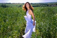 La mujer hermosa, la novia con los ojos azules y el pelo marrón camina a través de campo de la cosecha en un día soleado del ` s  fotografía de archivo libre de regalías
