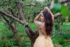 La mujer hermosa se está colocando entre la rama del árbol Imagen de archivo libre de regalías