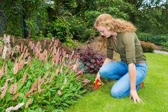 La mujer holandesa joven trabaja en jardín con esquileos de la hierba Fotos de archivo