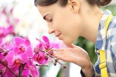 La mujer huele las flores en el jardín, fragancia de orquídeas fotos de archivo libres de regalías