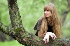 La mujer inclinó los codos en un tronco de árbol Fotos de archivo libres de regalías