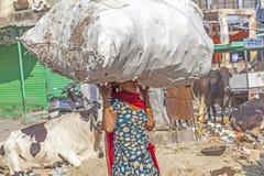 La mujer india lleva la carga pesada en su cabeza Imagenes de archivo