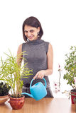 La mujer irriga las plantas Imágenes de archivo libres de regalías