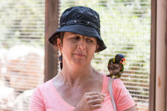 La mujer joven alimenta loros en el parque zoológico australiano Gan Guru en los kibutz Nir David, en Israel Fotografía de archivo libre de regalías