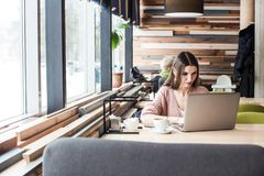 La mujer joven atractiva se sienta en una tabla en un caf? con una taza de caf? y goza de un ordenador port?til foto de archivo