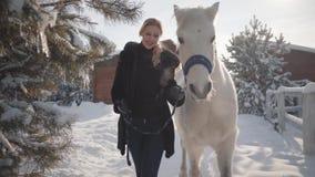 La mujer joven bonita camina con un caballo blanco hermoso que lleva su tenencia un estribo sobre un rancho nevado del país almacen de metraje de vídeo