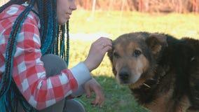 La mujer joven con el azul trenza los pelos acaricia el perro afuera almacen de metraje de vídeo
