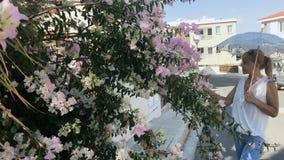 La mujer joven con el paraguas decorativo huele las flores en arbustos almacen de video