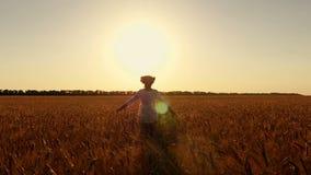 La mujer joven en el vestido blanco corre a través de un campo del trigo contra un fondo de la puesta del sol