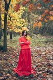 La mujer joven en vestido rojo con la corona del amarillo del otoño se va Fotos de archivo