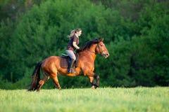 La mujer joven está montando un caballo en verano Foto de archivo