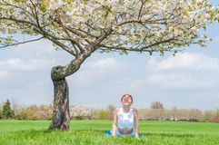 La mujer joven está practicando la yoga, haciendo ejercicio de la cobra, actitud de Bhujangasana fotografía de archivo