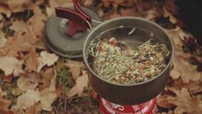 La mujer joven feliz hermosa cocina té en un mechero de gas, cerca del río en bosque del otoño, las hojas del roble Femenino con  almacen de metraje de vídeo