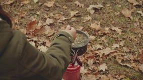 La mujer joven feliz hermosa cocina té en un mechero de gas, cerca del río en bosque del otoño, las hojas del roble Femenino con  almacen de video