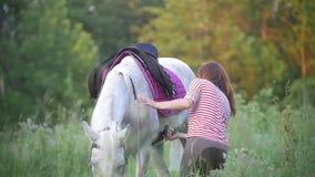 La mujer joven fija la silla de montar en el caballo en campo del verano metrajes