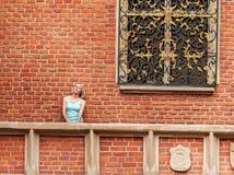La mujer joven hermosa se opone a un fondo de la pared de ladrillo Fotografía de archivo libre de regalías