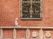La mujer joven hermosa se opone a un fondo de la pared de ladrillo Fotografía de archivo