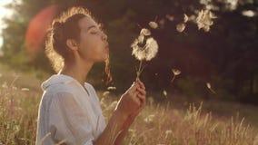 La mujer joven hermosa sopla el diente de le?n en un campo de trigo en la puesta del sol del verano Concepto de la belleza y del  metrajes