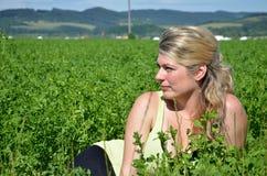 La mujer joven miente en campo verde en sol Foto de archivo libre de regalías