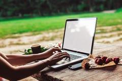 La mujer joven ordenador portátil que usa y que mecanografía en la tabla de madera áspera con la taza de café, fresas, ramo de pe imagenes de archivo