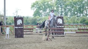 La mujer joven salta el caballo sobre un obstáculo durante un evento en una cámara lenta de la arena metrajes