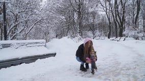 La mujer joven toma el pequeño terrier de Yorkshire en las manos, caminando en el parque del invierno metrajes
