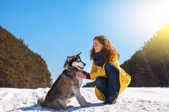 La mujer juega con el perro en el bosque del invierno Imágenes de archivo libres de regalías
