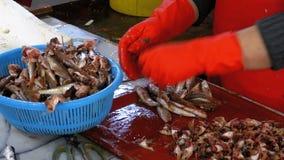 La mujer limpia y corta pescados frescos en mercado de pescados metrajes