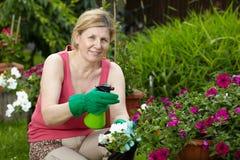 La mujer madura trabaja en su jardín Fotografía de archivo