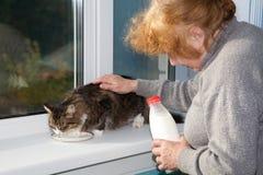La mujer mayor permite comer leche del gato de la bebida Imagen de archivo