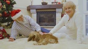La mujer mayor y el hombre mienten en la alfombra y frotan ligeramente un perro cerca del árbol de navidad almacen de video