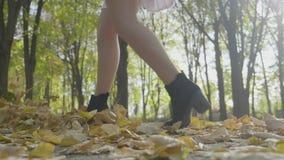 La mujer modelo atractiva vistió caminar elegante y el retroceso para arriba de las hojas de otoño con el pie amarillas en la cám almacen de video
