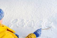 La mujer muy feliz de la belleza escribe un palillo en la nieve Fotos de archivo libres de regalías