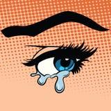 La mujer observa el griterío de los rasgones ilustración del vector