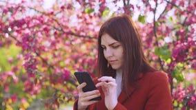 La mujer pelirroja joven atractiva utiliza smatphone en parque en la puesta del sol Flores de la primavera de la cereza o de los  almacen de metraje de vídeo