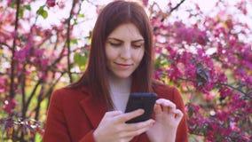 La mujer pelirroja joven atractiva utiliza smatphone en parque en la puesta del sol Flores de la primavera de la cereza o de los  metrajes