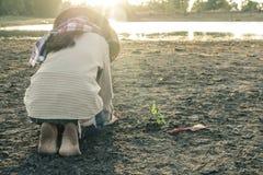 La mujer plantó un árbol en una tierra azotada por la sequía en esperanzas imágenes de archivo libres de regalías