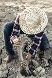 La mujer plantó un árbol en una tierra azotada por la sequía en esperanzas fotografía de archivo libre de regalías