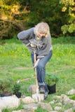 La mujer planta árboles   imagenes de archivo
