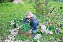 La mujer planta árboles en un jardín imágenes de archivo libres de regalías