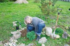 La mujer planta árboles en un jardín imagenes de archivo