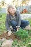 La mujer planta árboles en un jardín fotografía de archivo libre de regalías
