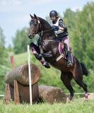 La mujer que el eventer en caballo está supera la cerca del registro Fotos de archivo
