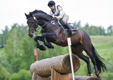 La mujer que el eventer en caballo está supera la cerca del registro Imagen de archivo libre de regalías