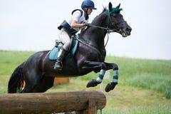 La mujer que el eventer en caballo está supera la cerca del registro Imagenes de archivo