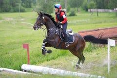 La mujer que el eventer en caballo está supera la zanja abierta Fotos de archivo libres de regalías
